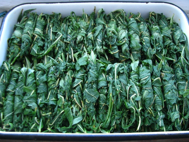 подготовка к ферментации скручивание листьев в рулончики