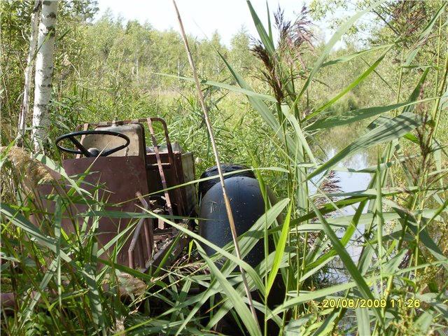 каракат в болоте